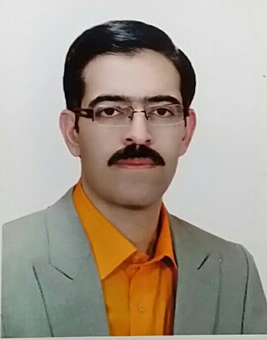 دکتر رامین  محمدی